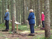Slovenian woodland shamanic earth energies